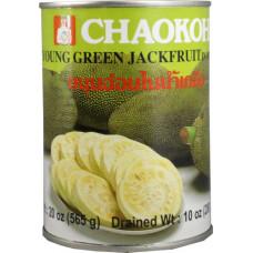45.20039 - CHAOKOH GREEN JACKFRT 24x20oz